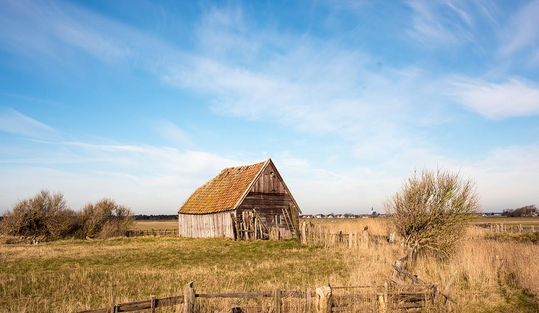Landschap Texel
